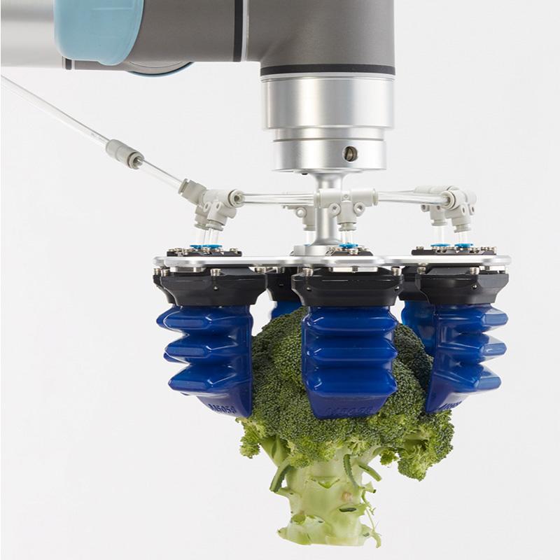 Robotgribere til berøringsfølsomme og skrøbelige emner inden for eksempelvis medicinalindustrien, fødevareindustrien og elektronikindustrien.